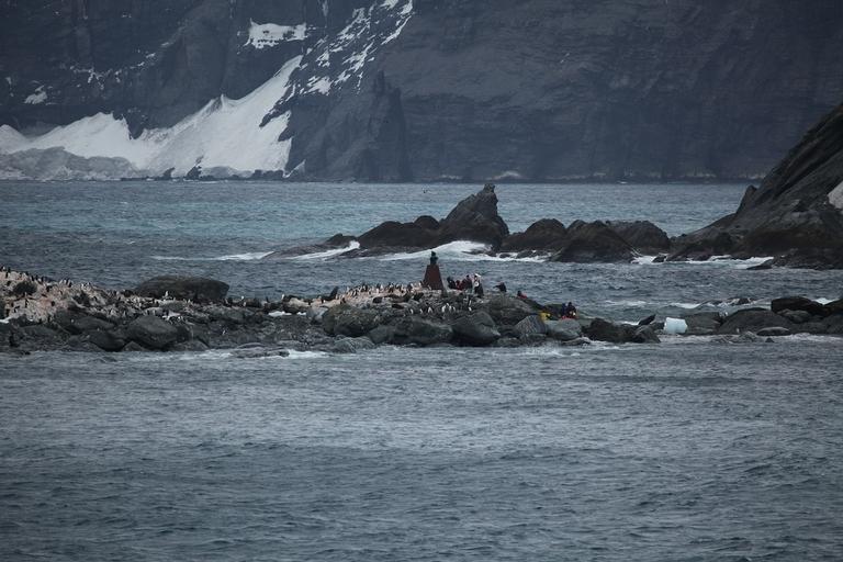 L'oceano Antartico riconosciuto ufficialmente. È il quinto al mondo