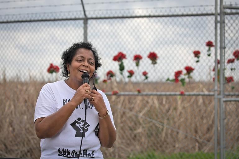 Sharon Lavigne, Goldman Environmental Prize