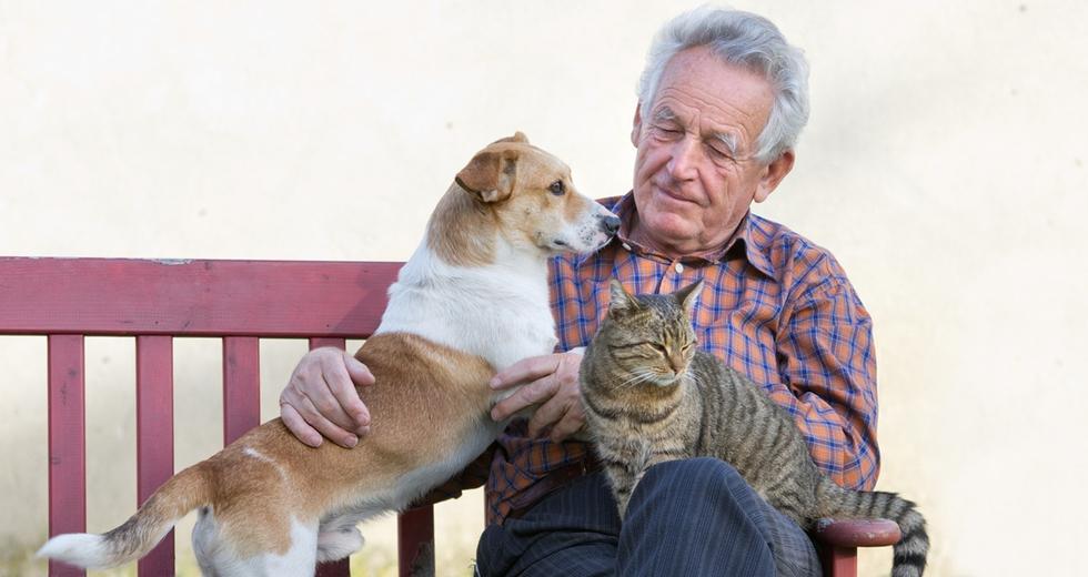 Questa è una vecchia amicizia, Lav invita i pensionati ad adottare animali